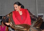 Faten Ali-Munger